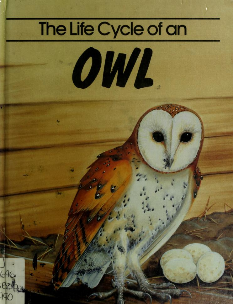 The life cycle of an owl by Jill Bailey