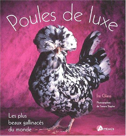 Les poules de luxe by Ira Glass